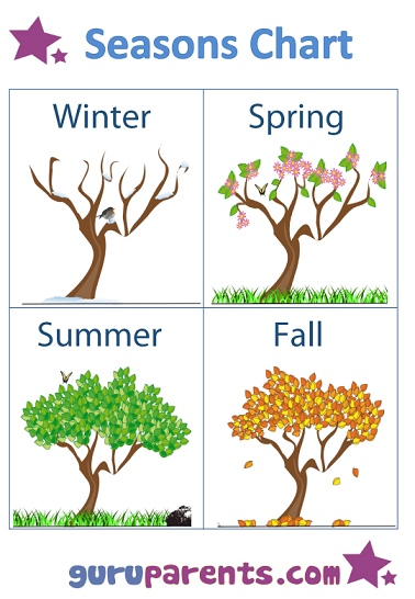 How trees look in the four season